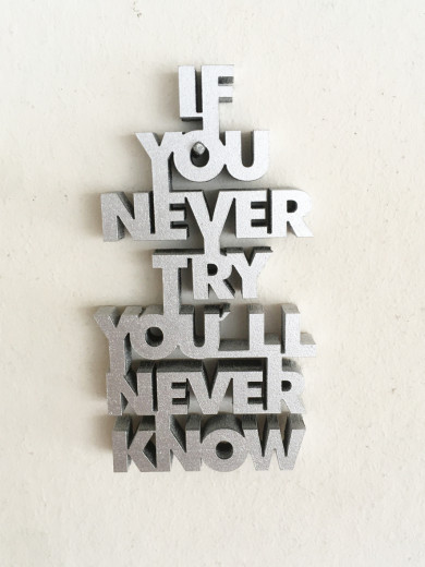 IF YOU NEVER TRY... Silber